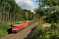 Foto zeigt:Ludmilla vor DB 152 bei Lenau