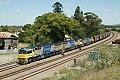 Foto zeigt: XRN014 + XRN007 + XRN017 mit Kohlezug, NB 524, East Maitland (Australien), 21.12.2014