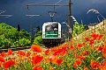 Foto zeigt: STB 183.717 als Lokzug bei Bruck an der Leitha (Ostbahn)