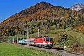 Foto zeigt:1144.036 mit Güterzug + Reisezugwagen bei Liezen (Ennstalbahn)