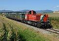 Foto zeigt: Oststeirische Sichtungen zwischen Weiz und Graz