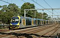 am Foto: OD6921, Summer Hill (Australien), 20.12.2014