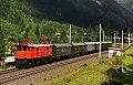 Foto zeigt: Rote und grüne 1245 im sonnigen Kärnten