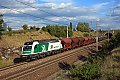 Foto zeigt: Bunte Tauri auf der neuen West bei Loosdorf