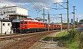 Foto zeigt: Blutorange Schönheit auf der Donauländebahn!