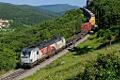 am Foto: ELL-Vectorn 193.822 mit Containerzug bei Hrastovlje (Koperrampe Slowenien)