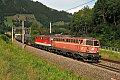 Foto zeigt: Vielfarbige Sichtungen aus der Steiermark