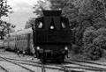 am Foto: Dampflok 3033 (30.33):  Schwarzweiß-Foto bei einer Rangierfahrt, EB-Straßhof