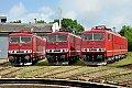 am Foto: 250er / 155er Lok-Parade im Eisenbahnmuseum Weimar