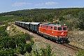 """Foto zeigt: 2143.070 """"Reblaus-Express"""" (Strecke Retz - Drosendorf)"""