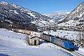 Foto zeigt: Bunte Sichtungen aus dem Salzburger Land