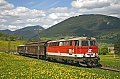 Foto zeigt: 2043.022, VG 77254, Pfennigbach (Puchbergerbahn), 07.05.2008